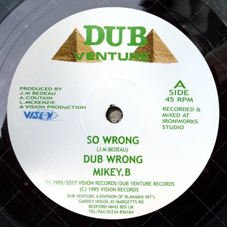 Mikey. B - So Wrong