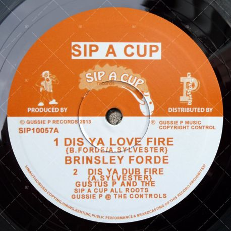 Brinsley Ford - Dis Ya Love Fire