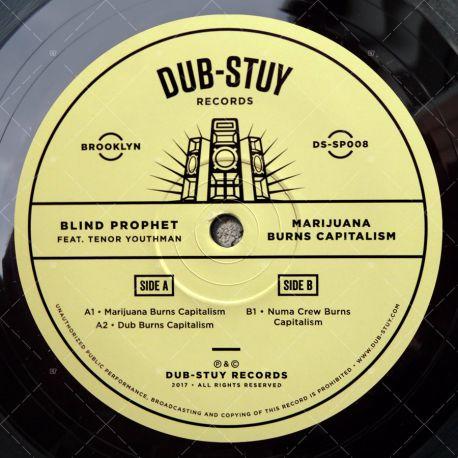 Blind Prophet feat. Tenor Youthman - Marijuana Burns Capitalism