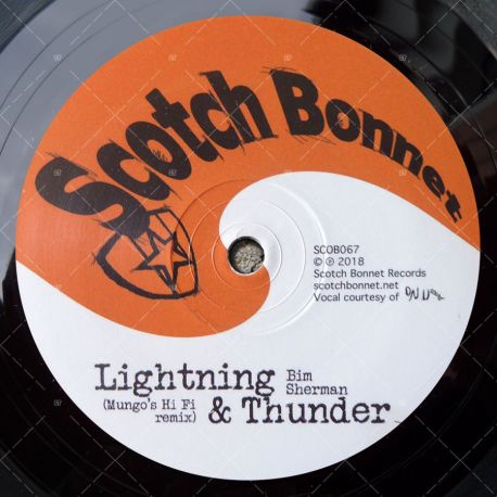 Bim Shirman - Lightning & Thunder (Mungo's HiFi Remix)