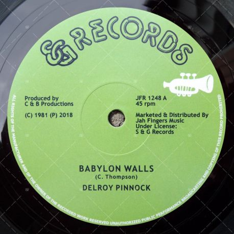 Delroy Pinnock - Babylon Walls