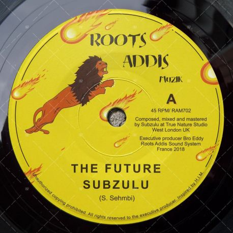 Subzulu - The Future