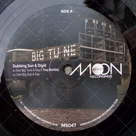 Dubbing Sun & Digid - One Big Tune A Day feat. Troy Berkley
