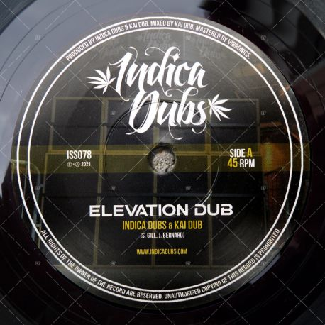 Indica Dubs & Kai Dub - Elevation Dub